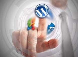 Diseño web y CMS